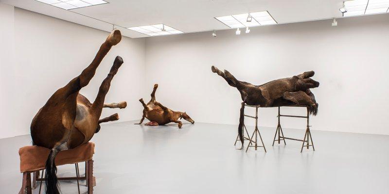 I cavalli di Berlinde De Bruyckere. Sanguine. Barocco. Fondazione Prada. Milano