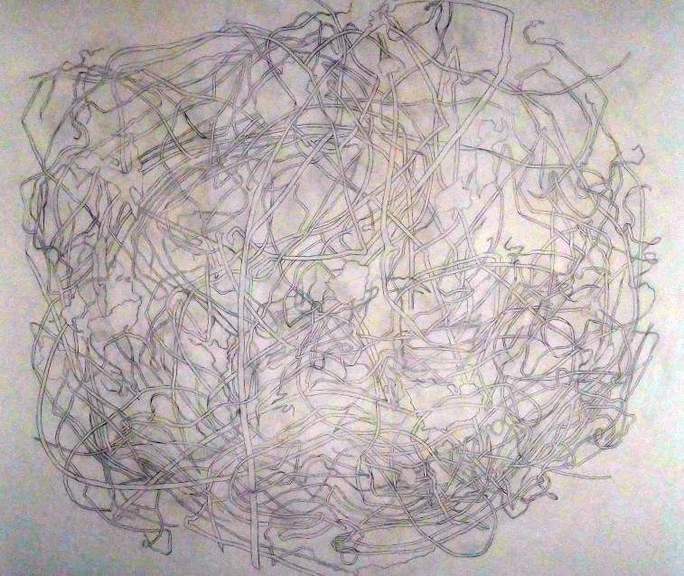 fotografia, colori, opera d'arte di Giovanni De Lazzari in mostra alla Fondazione Adolfo Pini Milano, intreccio di elementi vegetali, matita grafite su parete bianca, dimensioni ambientali