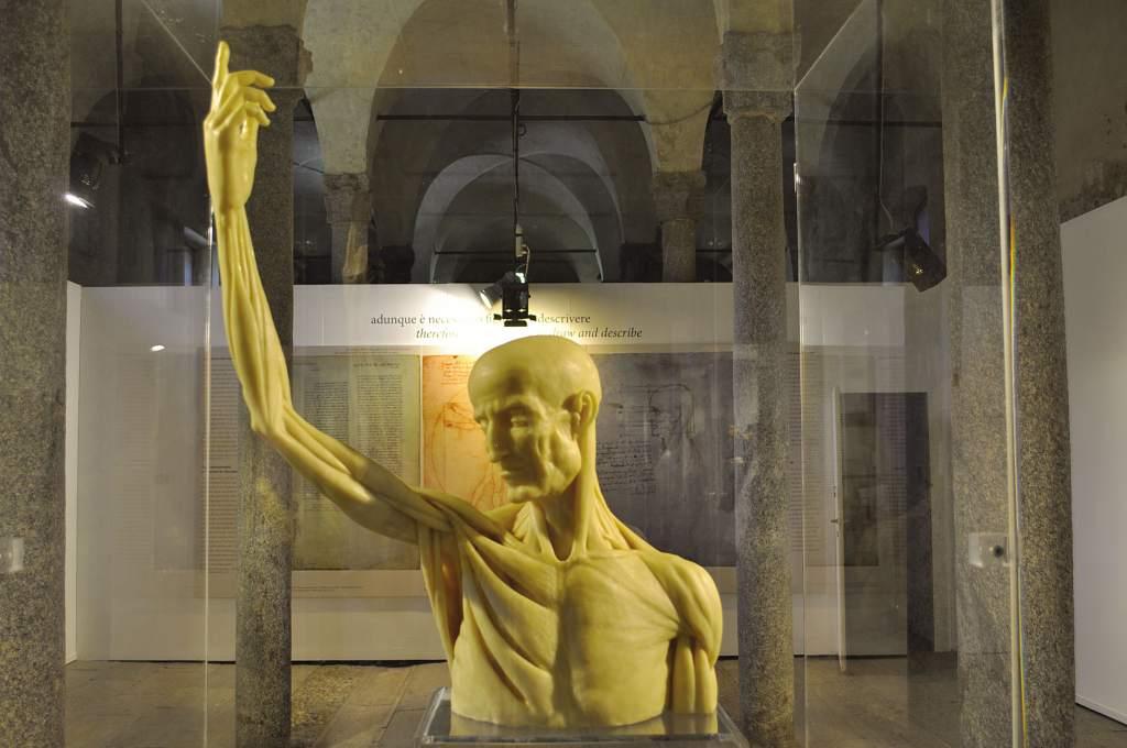 scultura_in_ceroplastica_busto_DSC_1875