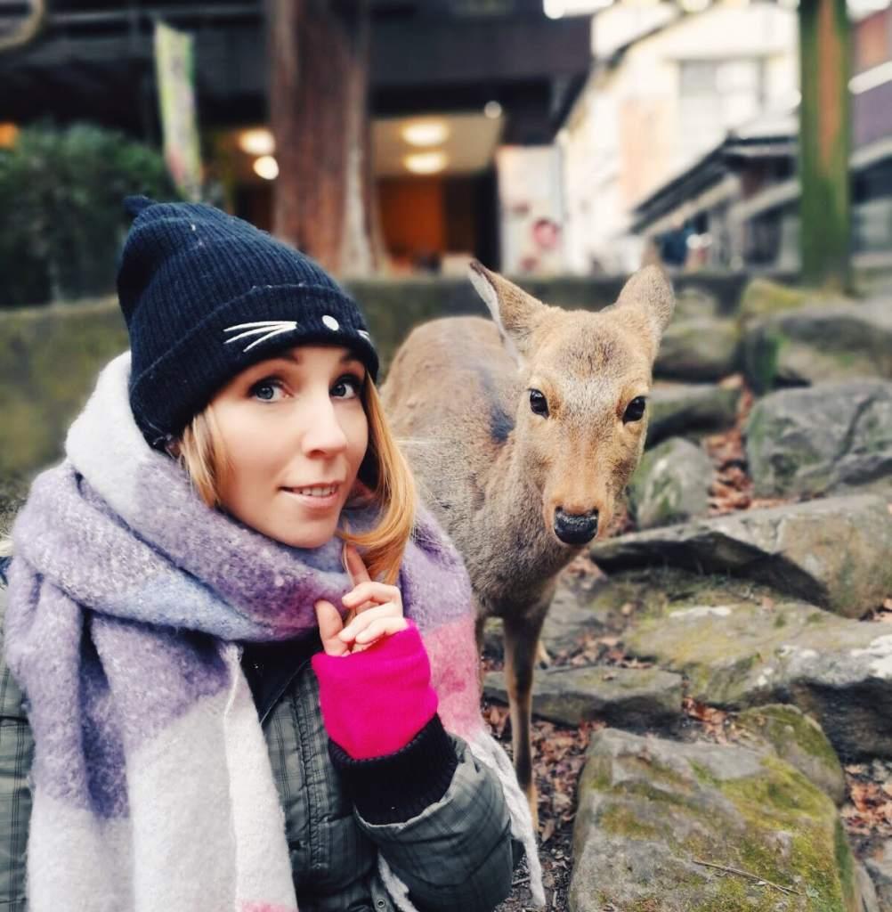 Nara giappone cervi