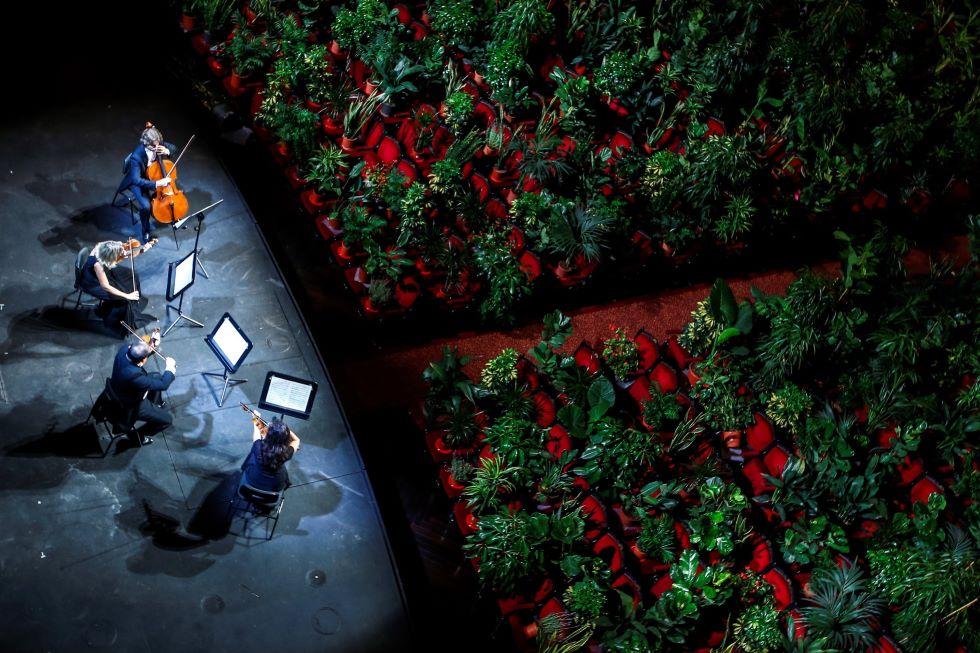 vista dall'alto sul palco del Gran Teatre del Liceu dove il quartetto d'archi suona per una platea di piante