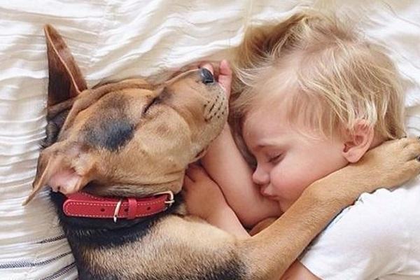 un cane e un cambino che dormoni vicini