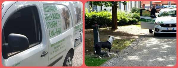 nella foto di sinistra il servizio di animali che è andato a salvare il cane abbandonato in quella di destra l'arrivo della polizia dopo le segnalazioni del cane abbandonato