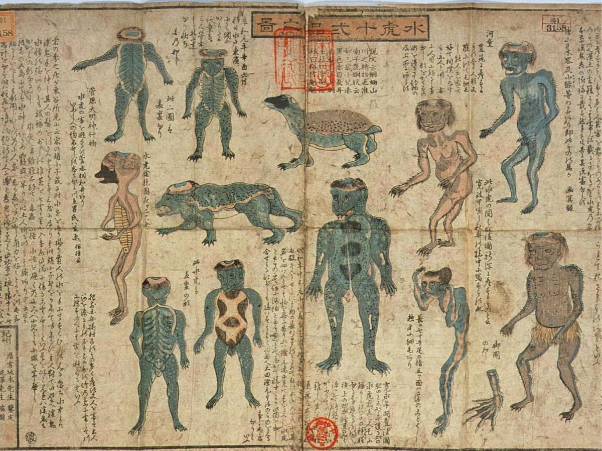 Rotolo che mostra varie illustrazioni di kappa