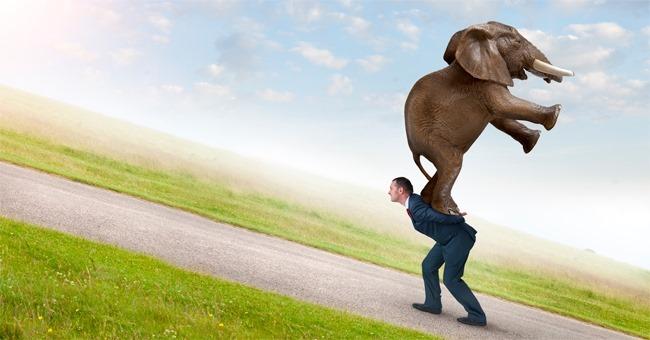 paura del rimpianto uomo che porta elefante sulle spalle