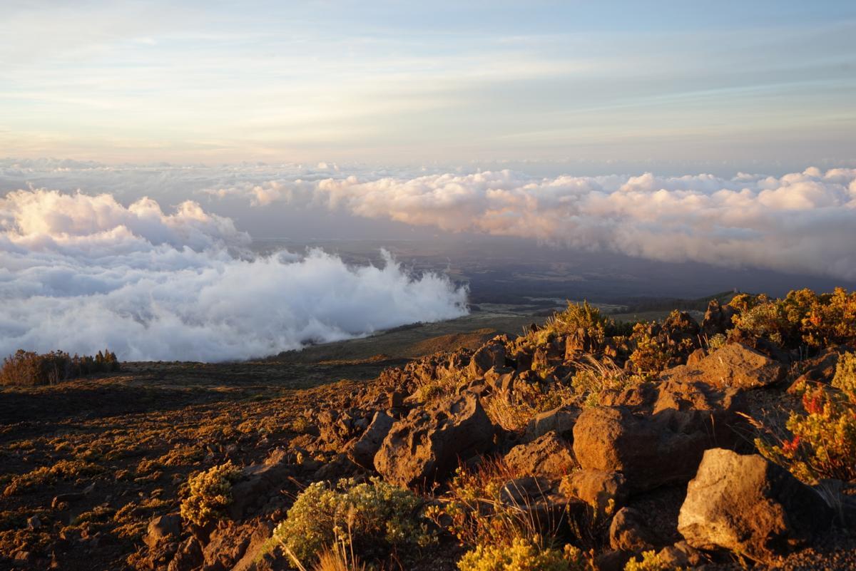 La grandiosa natura degli Stati Uniti Maui, Hawaii