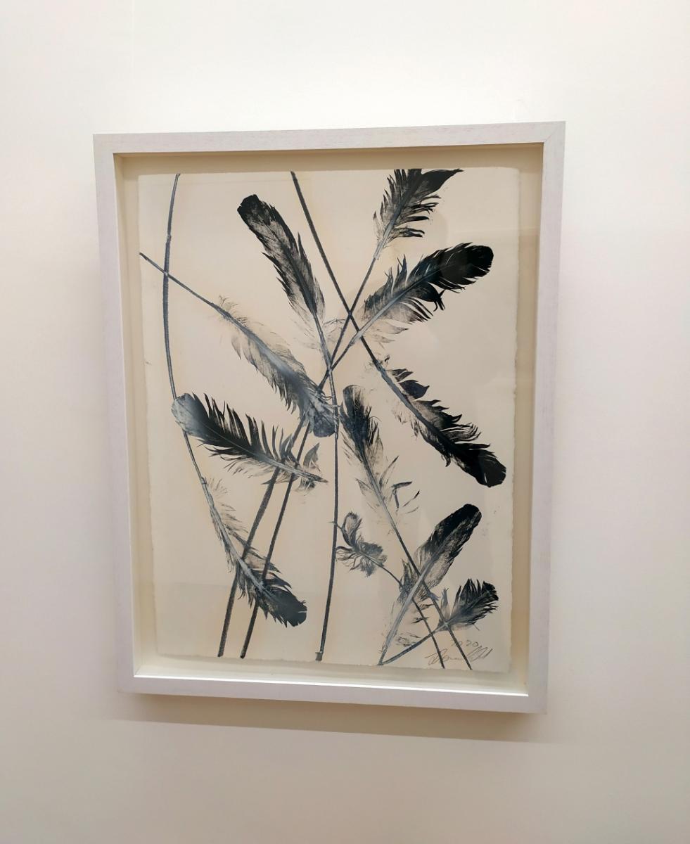 Julia Bornefeld, opera su carta bianca con piume nere dell'artista tedesca