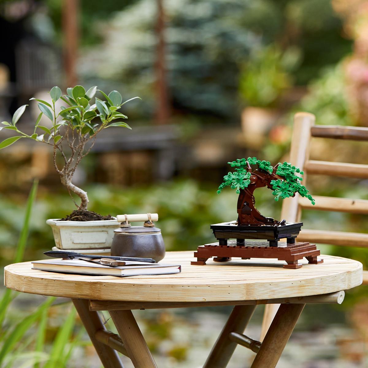 LEGO Botanical un bonsai vero e un bonsai lego