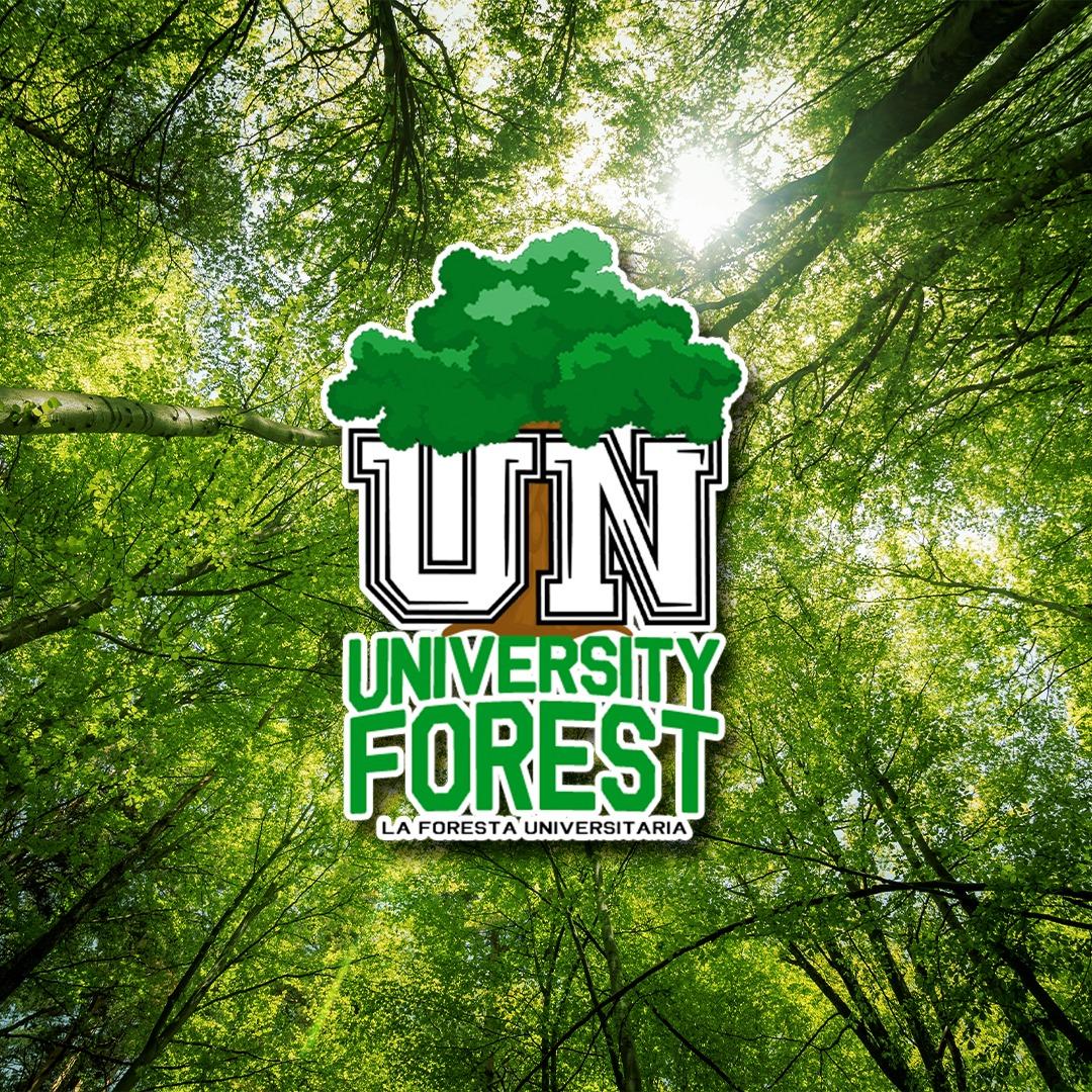 La foresta universitaria locandina