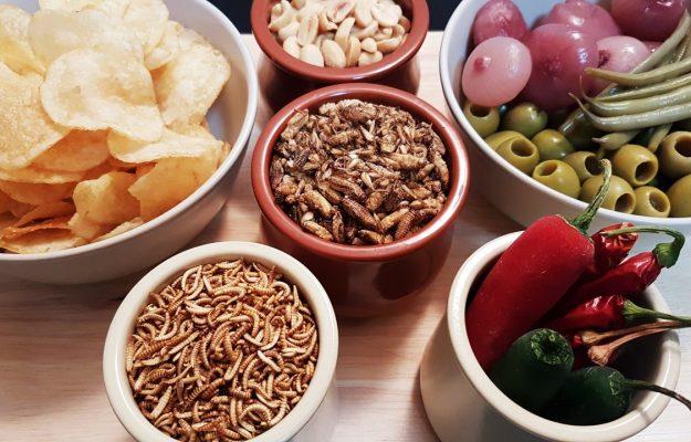 Il futuro del cibo aperitivo con patatine e insetti