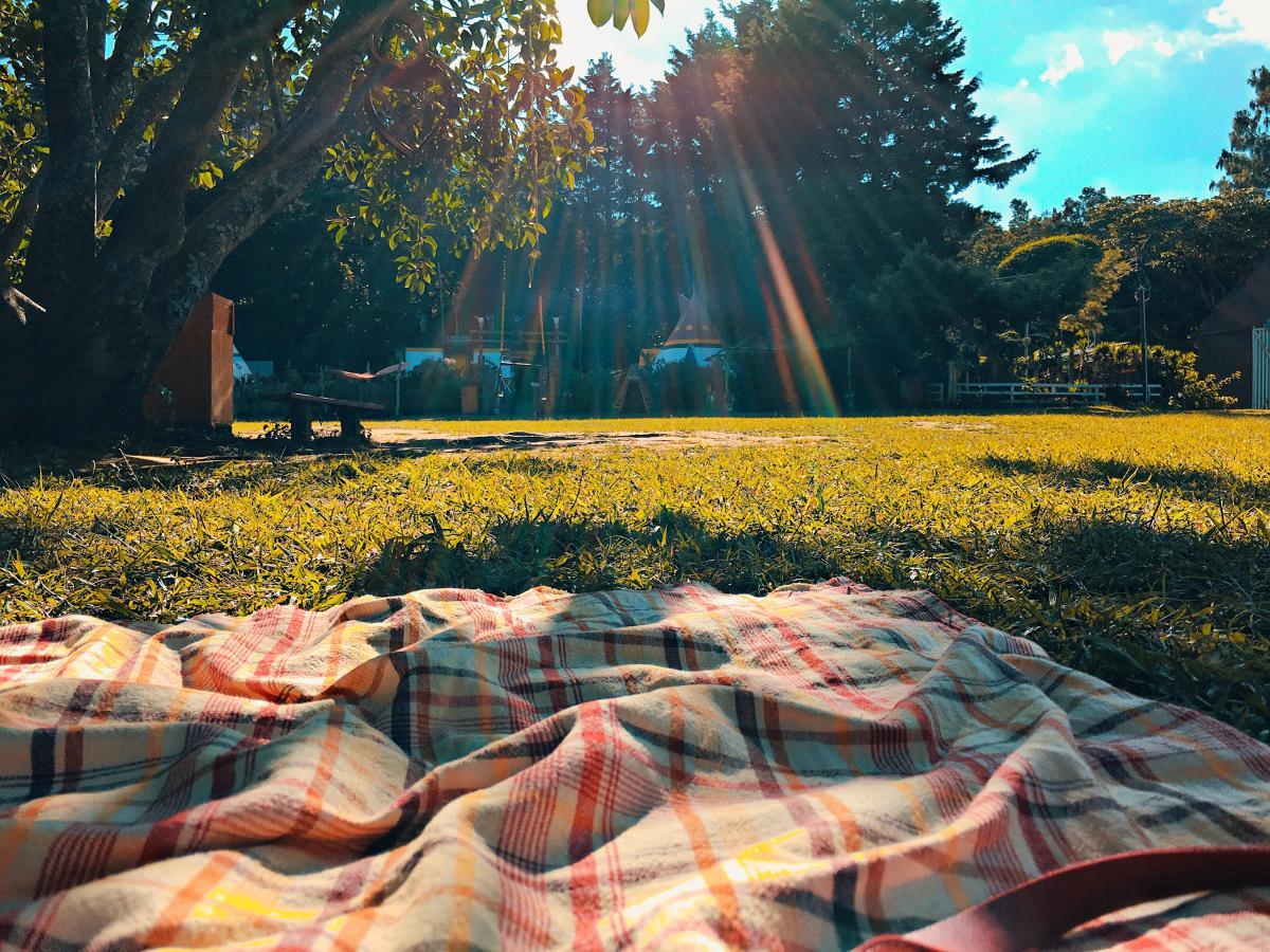 Picnic Chic un tela da picnic in un parco