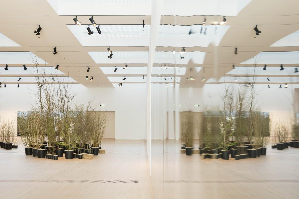Foresta M9 interno museo