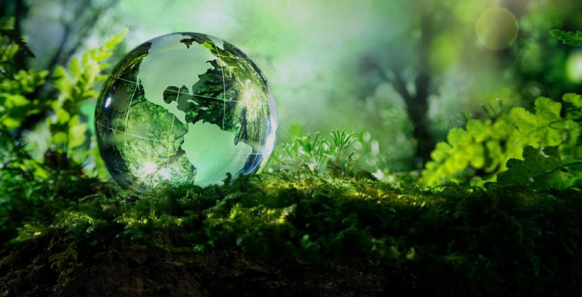 comportamenti sostenibili