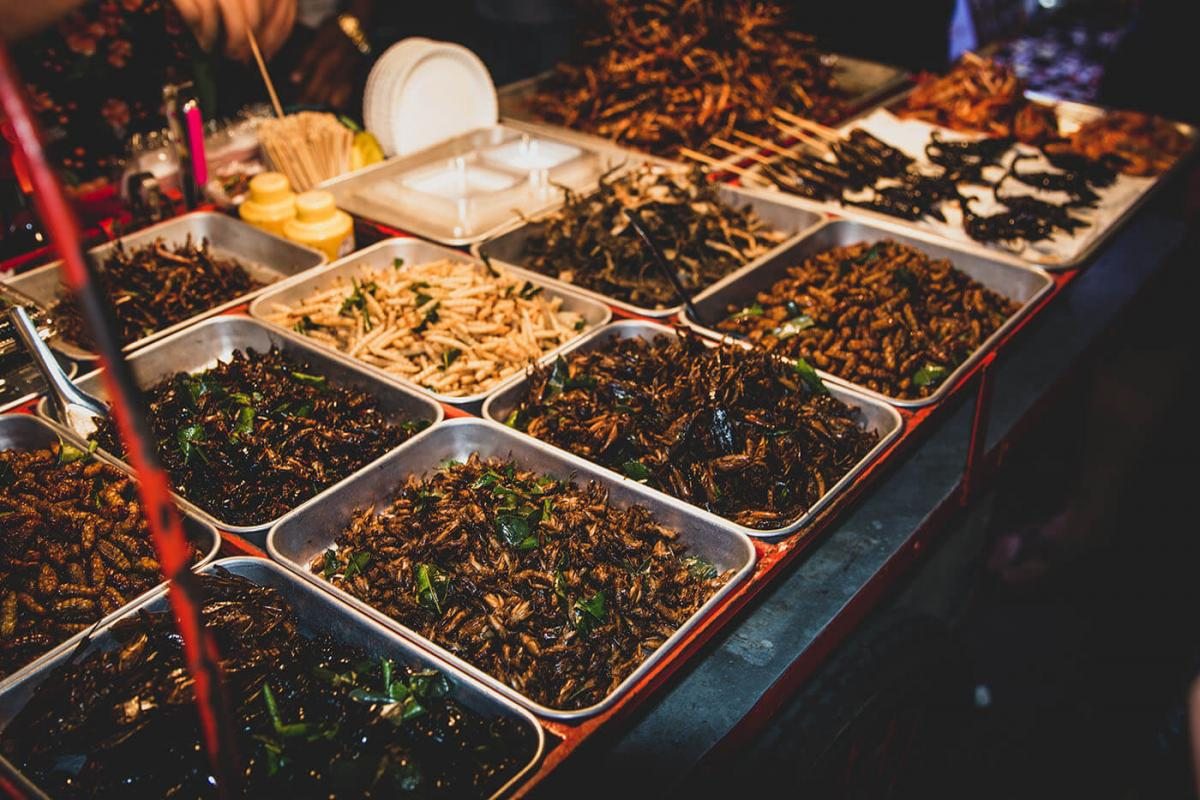 Insect market Thai