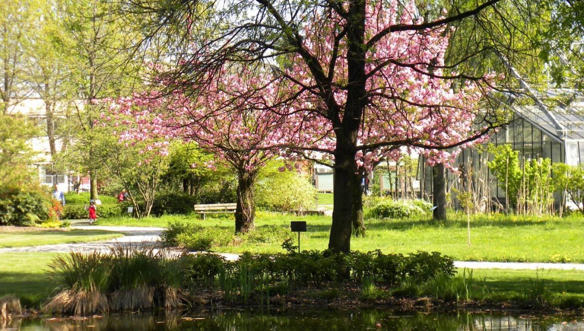 Penisola del Tesoro  Orto Botanico di Città Studi di Milano