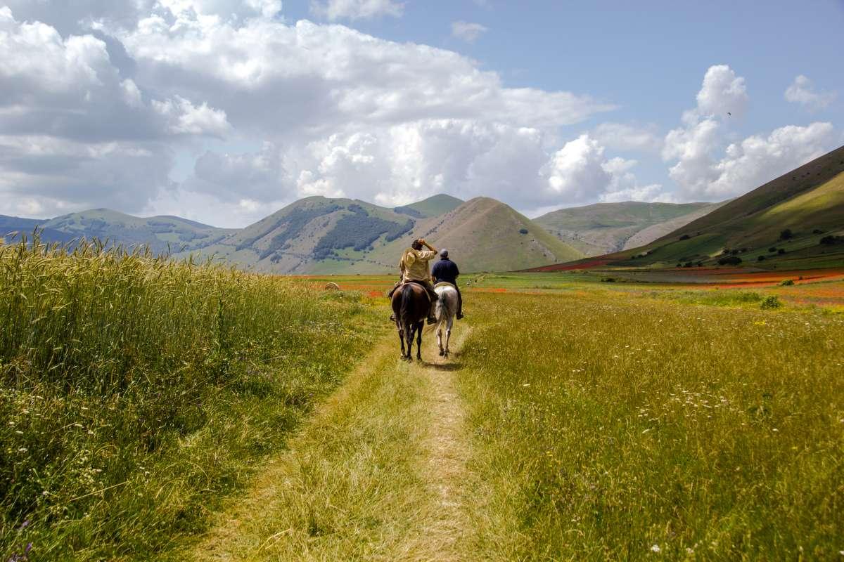 Attività da fare in Umbria: passeggiata in cavallo a Castelluccio di Norcia