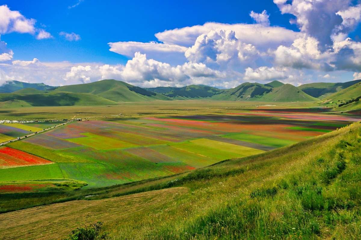 Umbria on the road: vista dall'alto della colorata fioritura di Castelluccio