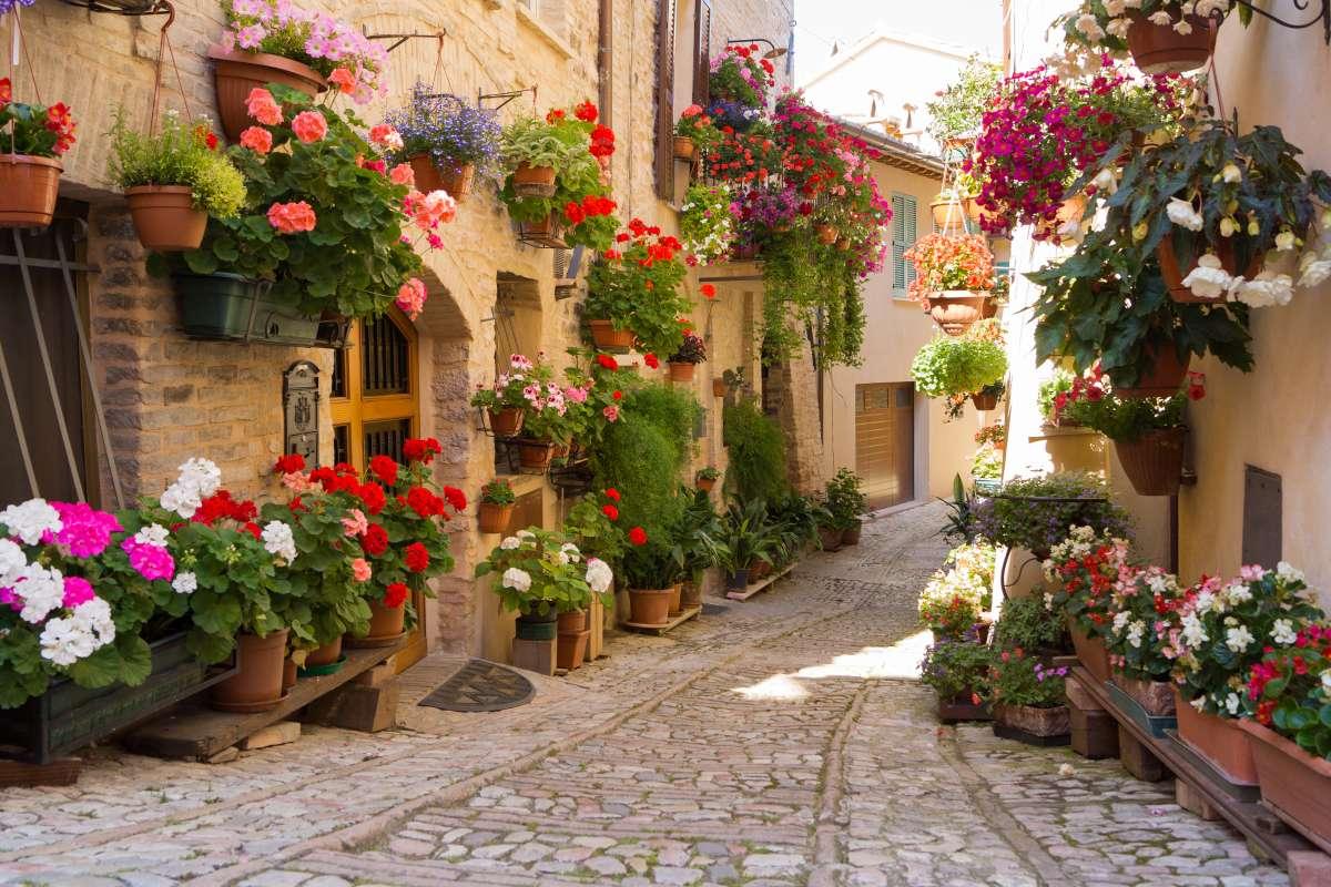 Vicolo con i fiori tipico di Spello in Umbria